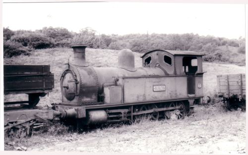 05044 No.7 Birch 2-4-0T Bt Rawnsley 1888 C & R  Past its best