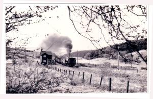 05164 Wimblebury 0-6-0ST Hunslett 3839-1956 CRC Taken Hazel Slade
